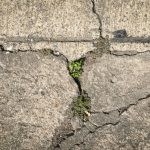Repair or Replace Concrete
