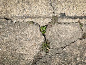 Repair or Replace Concrete