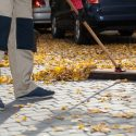 Leaf, Acorn and Pinecone Stains: Getting the Marks of Fall Off Your Driveway